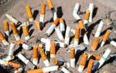 Cigarettes in outdoors ashtray with sand closeup image — Stock Photo