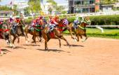 Moving jocky and horse racing sport — Stock Photo