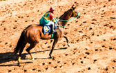 Moving shot jocky and horse racing sport — Stock Photo