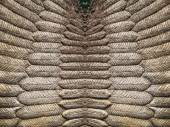 Artificial feather cement texture — Stock Photo
