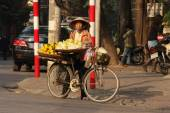 Street vendor sells fruits from her bicycle — Stock Photo