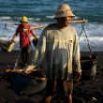 Постер, плакат: Sea salt manufacturing Bali Island