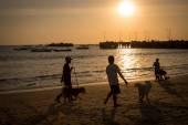 Bali sunset — Zdjęcie stockowe