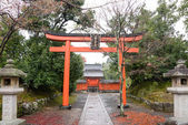 Gardens of the Tenryuji Temple in autumn. — Stock Photo