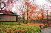 Hogonin Temple, Kyoto, Japan — Foto de Stock