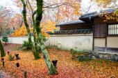 Hogonin Temple, Kyoto, Japan — Stockfoto