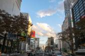 Tokyo city buildings and streets — Stock Photo