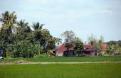 Rural scene in a coastal village in Kuantan — Stock Photo
