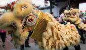 Lion dance — Stock Photo