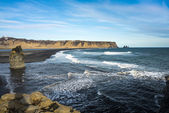 Sea-cliffs of Dyrholaey, Iceland — Foto de Stock