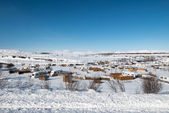 Small town on the southern coast in Iceland — Stock Photo