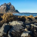 Stokksness, Iceland — Stock Photo #70497939