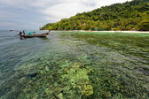 Tourist visit the islands off Phuket and explore the coral reefs — Foto Stock