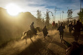 Horse riding in volcano mountains — Stock Photo