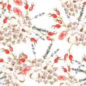 Mão desenhada sem costura padrão aquarela floral com flores macias, algodão e brier bagas vermelhas em vetor no fundo branco — Vetor de Stock