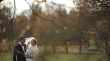 Happy wedding couple smiling newlyweds walking in autumn park — Stock Video