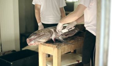 Fish production guys undress a body of big swordfish clean from skin make fillet — Stock Video