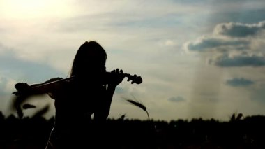Girl violinist playing the violin in wheat field. — Stockvideo