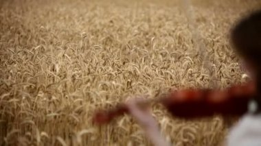 Girl violinist playing the violin in wheat field. — Stock Video