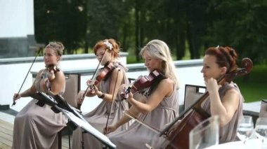 Musical quartet. Three violinists and cellist playing music.  SESSION KEYWORD: uzhursky003 — Stock Video