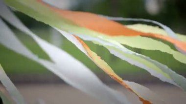 Silk multicolored ribbons developed in the wind — Stock Video