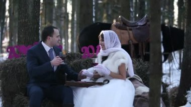 Newlyweds in the winter forest with a horse at sunset — Vídeo de Stock