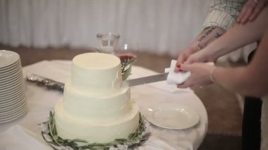 The newlyweds cut the wedding cake — Stock Video