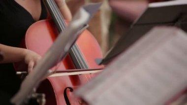 Symphony orchestra — Stockvideo