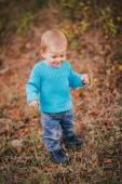 Mode jongetje in een forest dragen blauwe trui en jeanse — Stockfoto
