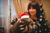 Woman with her cat wearing Santa Claus hat near christmas tree — Stock Photo