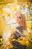 Beautiful young woman posing in an autumn forest — Stock Photo