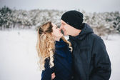 Young couple walking in a winter countryside — Stock fotografie