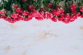 Romantic floral roses frame vintage background — Stock Photo
