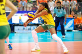 FIVB Women's World Grand Prix 2014 — Stok fotoğraf
