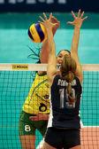 Fivb bayanlar dünya grand prix 2014 — Stok fotoğraf