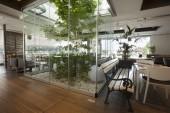 Beautiful cafe interior with tree — Stockfoto