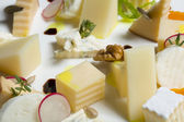 Assortment of cheeses with radish and nuts — Stock Photo
