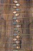 Dry stalks poppy heads on a wooden board arranged parallel — Stock Photo