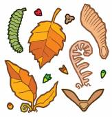 Autumn leaves and plants — Stock Vector