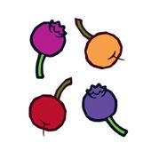 Autumn colored berries — Stock Vector