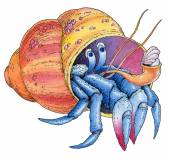 Hermit crab watercolor painted hand drawing — Stock Photo