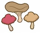 Jadalne grzyby w jesieni — Wektor stockowy
