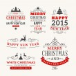 Christmas decoration set of calligraphic and typographic design elements, labels, symbols, icons, objects and holidays wishes — Stock Vector #54740837