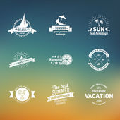 Set of summer retro design elements. Vintage ornaments and labels, tropical paradise, beach vacation, adventure and travel — Stockvektor