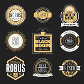 Set of Retro Vintage Badges and Logotypes. Vector design elements, business signs, logos, identity — Stockvektor