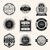 Set of Retro Vintage Badges and Logotypes. Vector design elements, business signs, logos, identity — Stock Vector