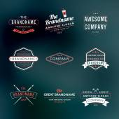 Set of Hipster Vintage Labels, Logotypes, Badges for Your Business — Stock Vector