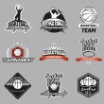 Basketball emblem — Stock Vector #74221193