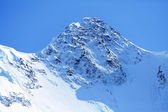 Tête d'une montagne — Photo