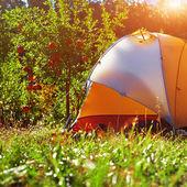 Orange tent in the garden — Stock Photo